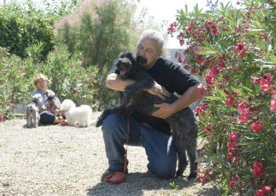 residencia-canina-4